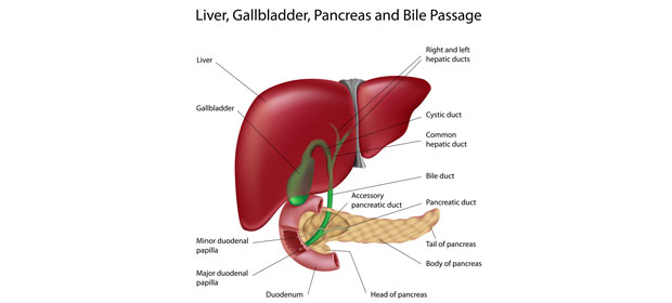 Gallstone Surgery – Laparoscopic Gallbladder Removal